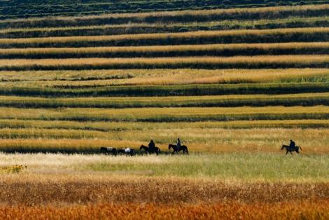 Horsemen in fields, Lesotho | © Meri Hyöky Photography